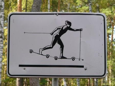 На Эльбрусе и Архызе могут появиться лыже-роллерные трассы